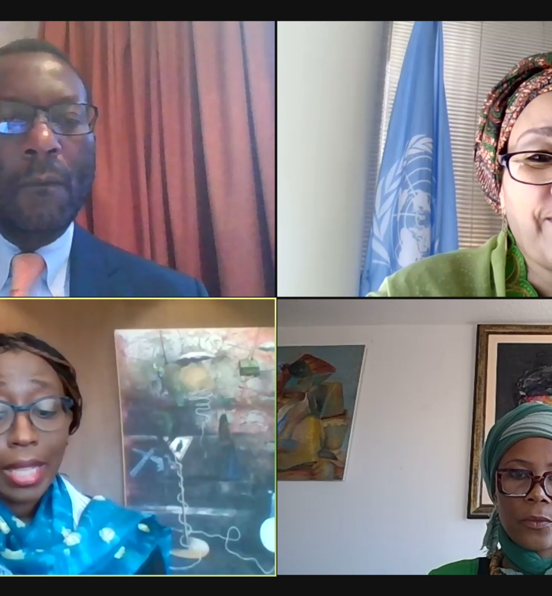 A screenshot of the virtual meeting with the DSG herself on the top right with meeting participants to the left and below her.
