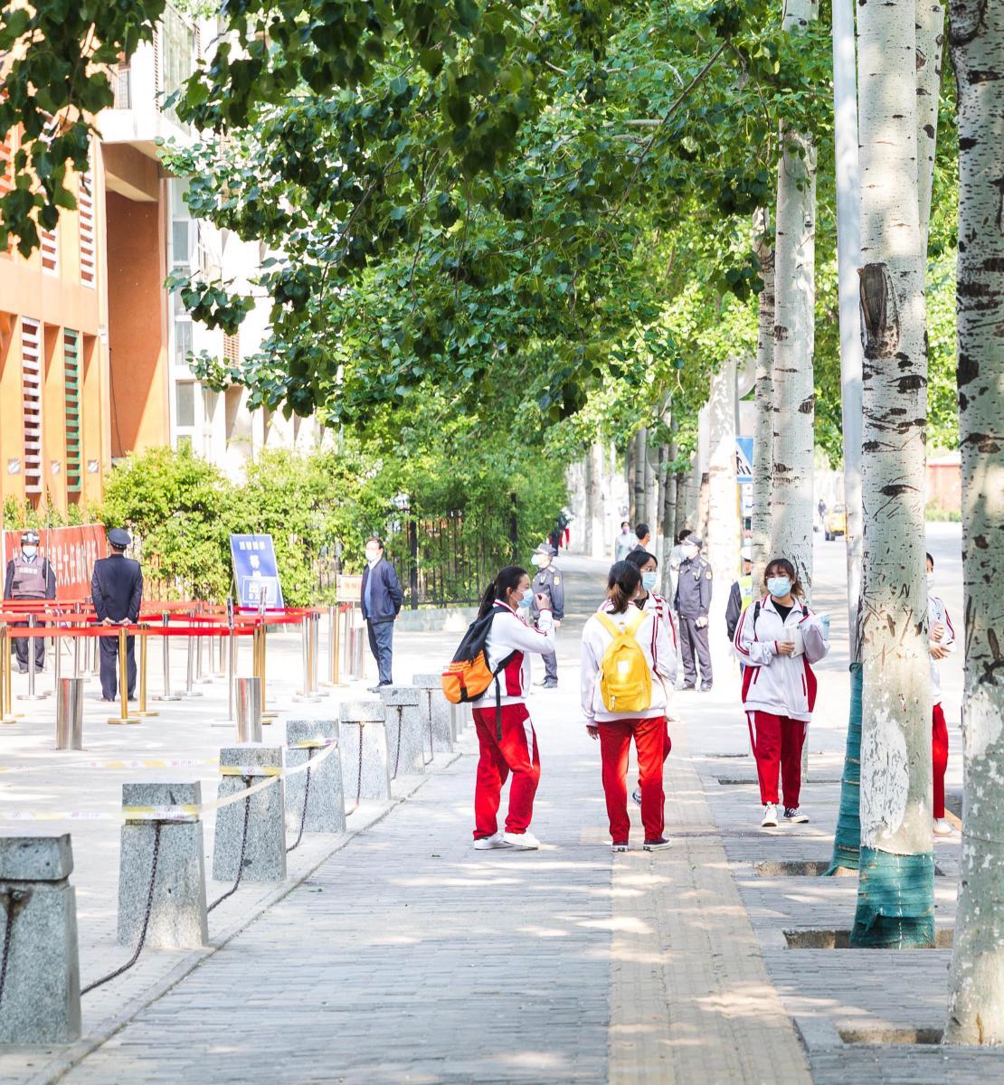 孩子们一起站在学校外面的绿树下。