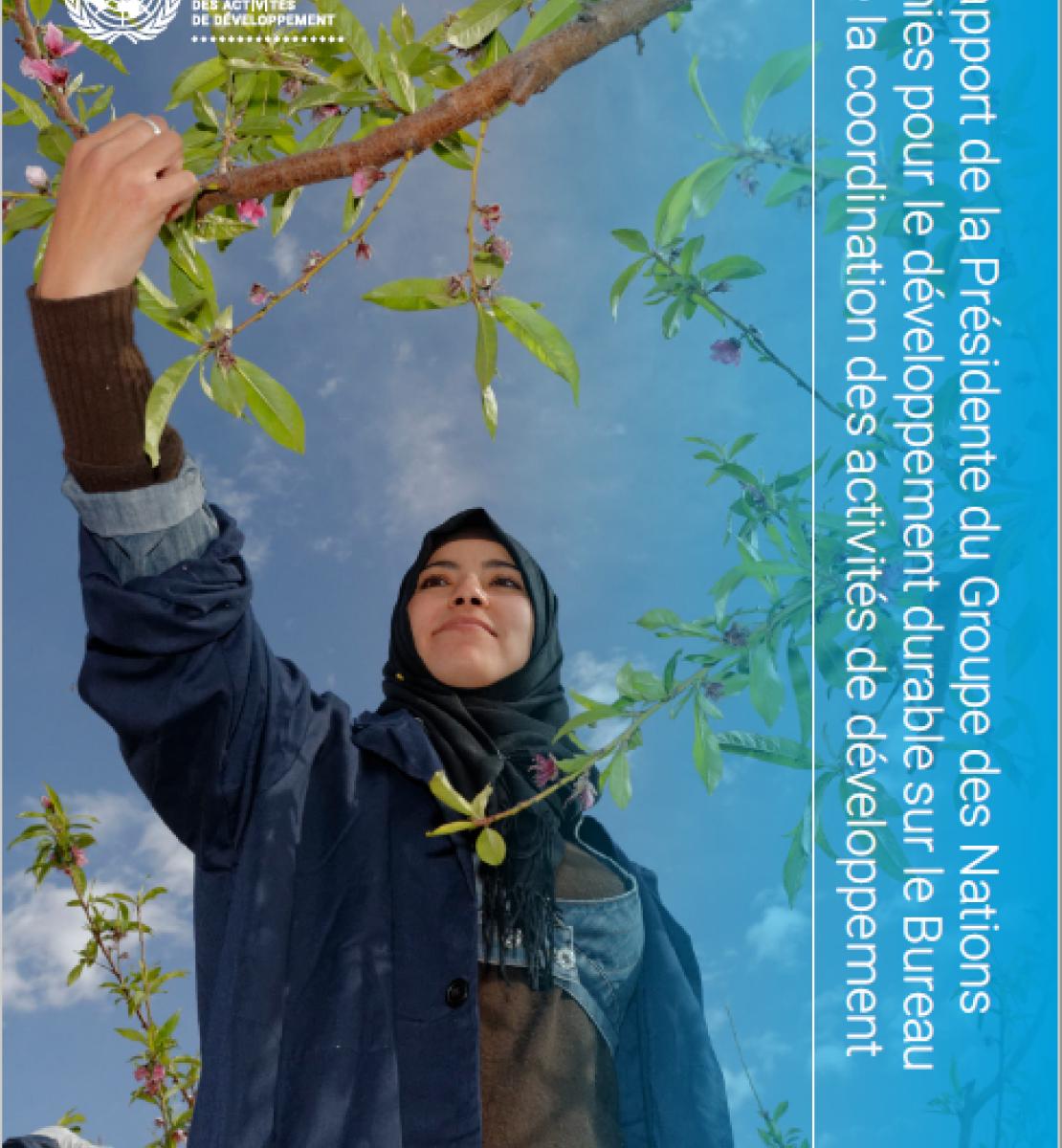 Une jeune femme tend le bras vers une branche d'arbre. Le logo du Bureau de la coordination des activités de développement apparaît en haut à gauche de la couverture et le titre du rapport de la Présidente du GNUDD est affiché verticalement sur le bord droit de la couverture.
